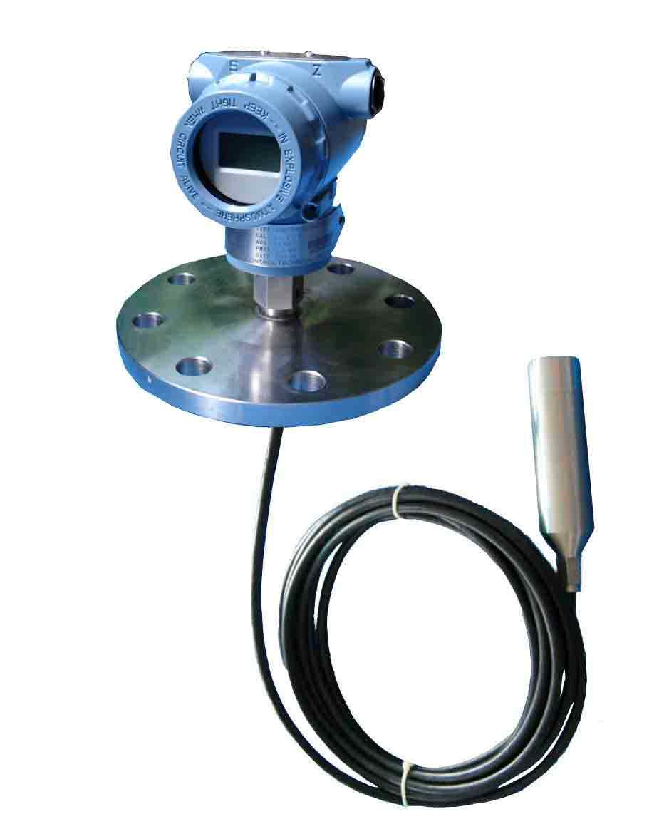 Flange type level sensor with LCD